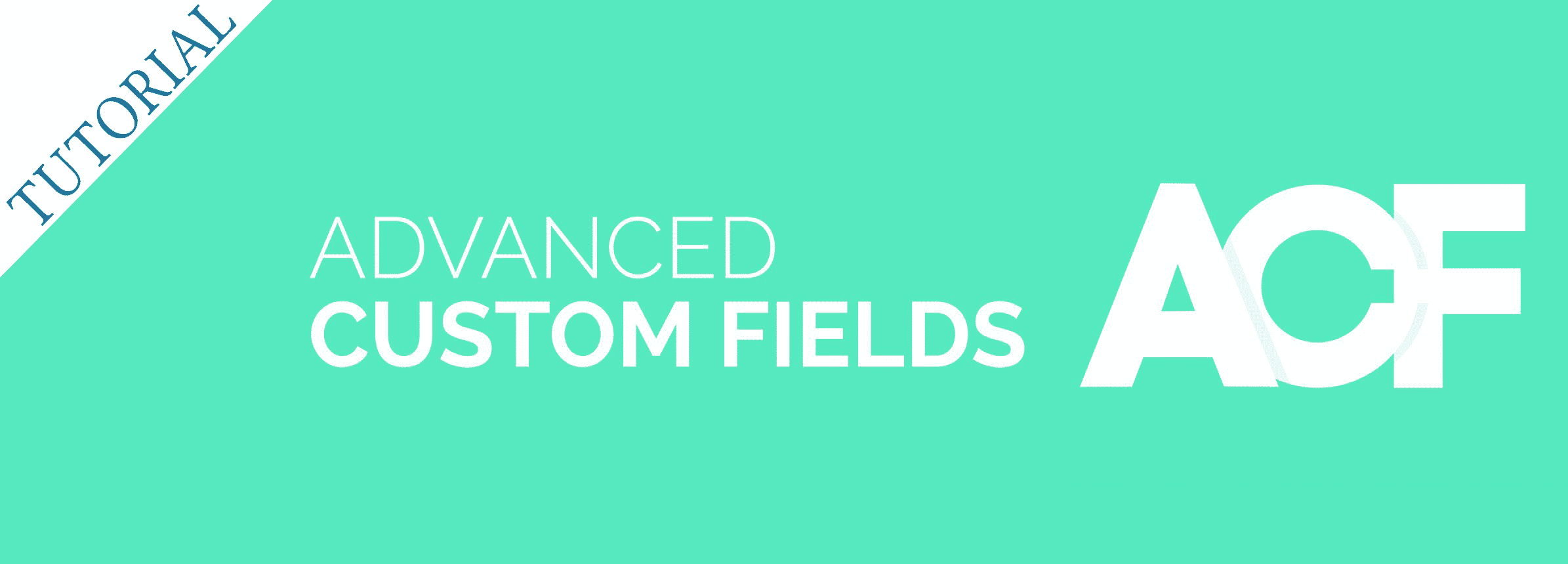 Advanced Custom Fields【TUTORIAL en español】